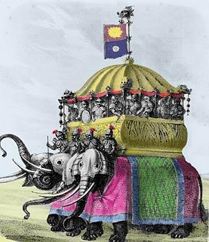 roliga rosa elefanter